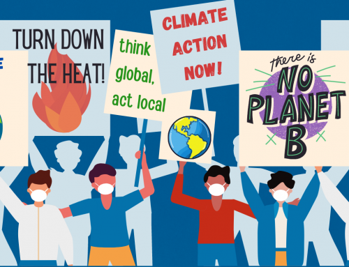 Climate Action Hour –  Saturday, October 31 at 11 am